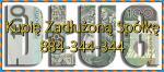 Kupię Zadłużoną Spółkę, JDG, Antywindykacja, pomoc 233/299/586 K.s.h kontrole US/ZUS